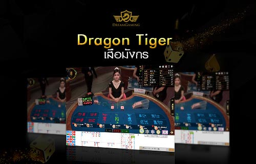 DG Casino | เสือมังกร